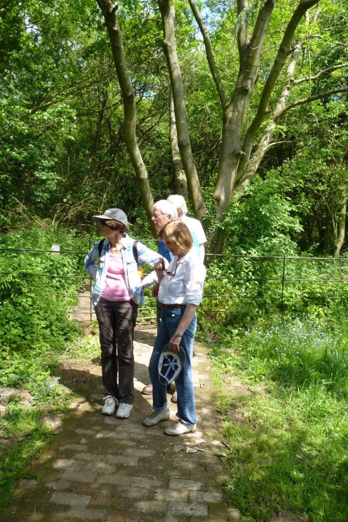 Hedgerley Walk